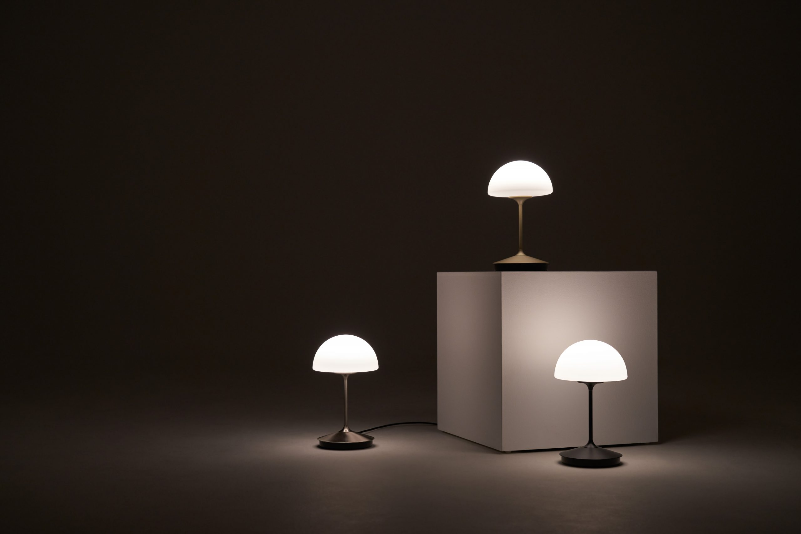 Pensee Table Lamp (10)