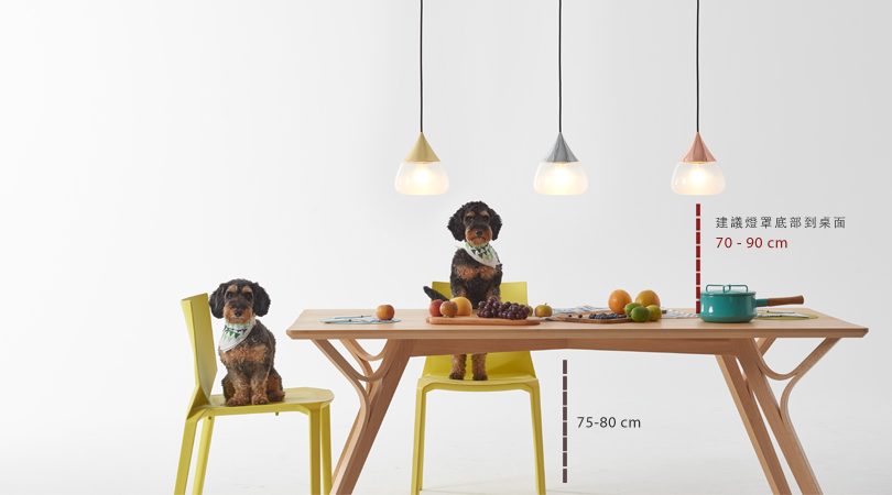 Hanging Dining Room Pendant Lamps